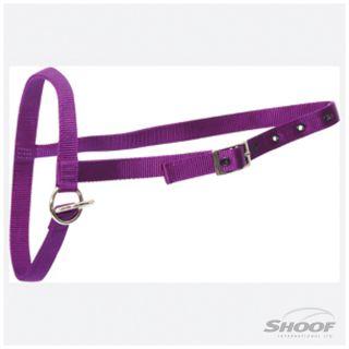 Halter Nylon Calf Tethering Purple