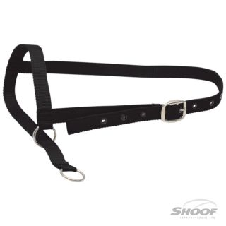 Halter Nylon Cow Leading Black