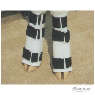 Leg Splint Ozland Calf Pair